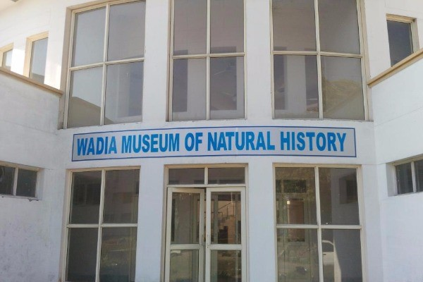 Museum inside Auditorium wadia museum of natural history Jammu