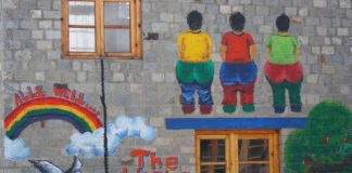 The 'Idiotic Wall' at Druk Padma Karpo School leh